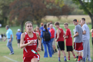 Despite injuries, sophomore runner excels at state