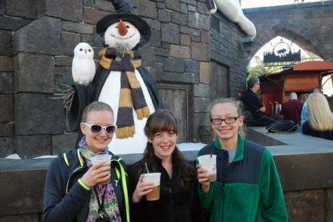 Wizards, witches, muggles welcome at Harry Potter theme park