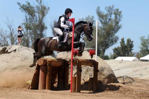 Champion equestrian comes home