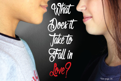 What does it take to fall in love?