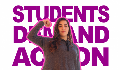 Senior Sophie Herrmann advocates for Students Demand Action program