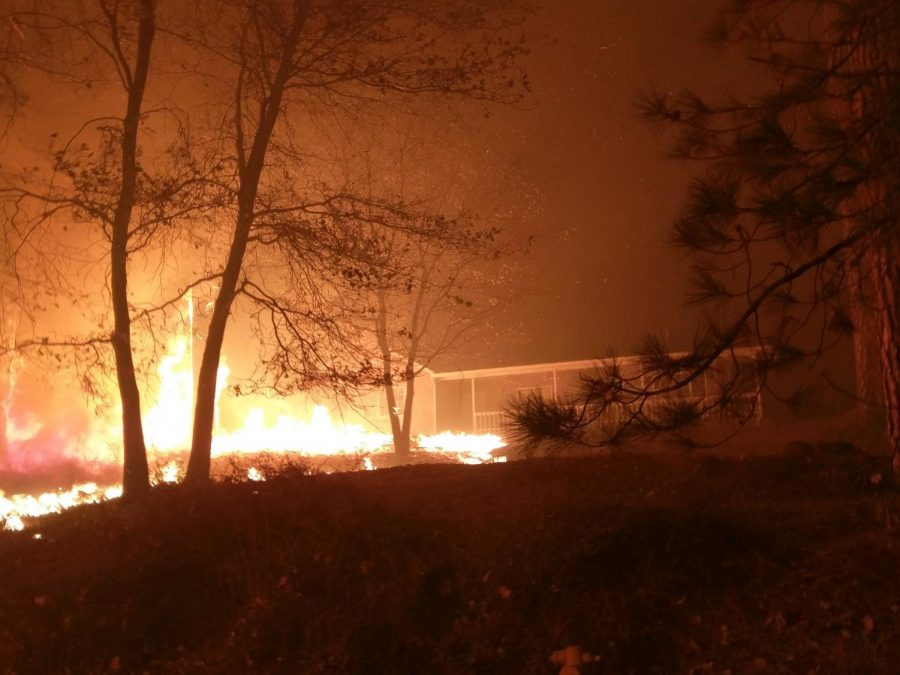 Almost 11,000 homes were destroyed in the fire.