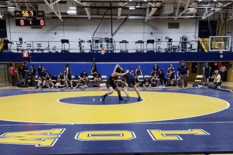 WHS wrestling adds another girl to a male-dominated team