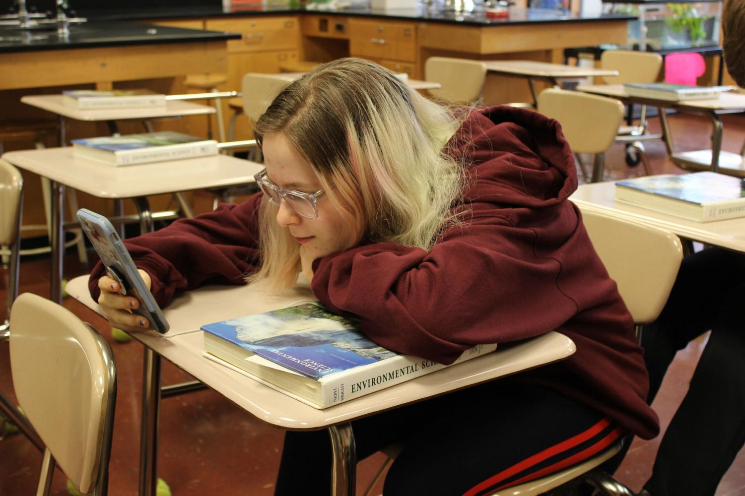 Junior Gwen Arbetman sits in her 3rd period APES classroom. Unlike in many classes, students in AP Environmental Science use textbooks fairly often to complete assignments.