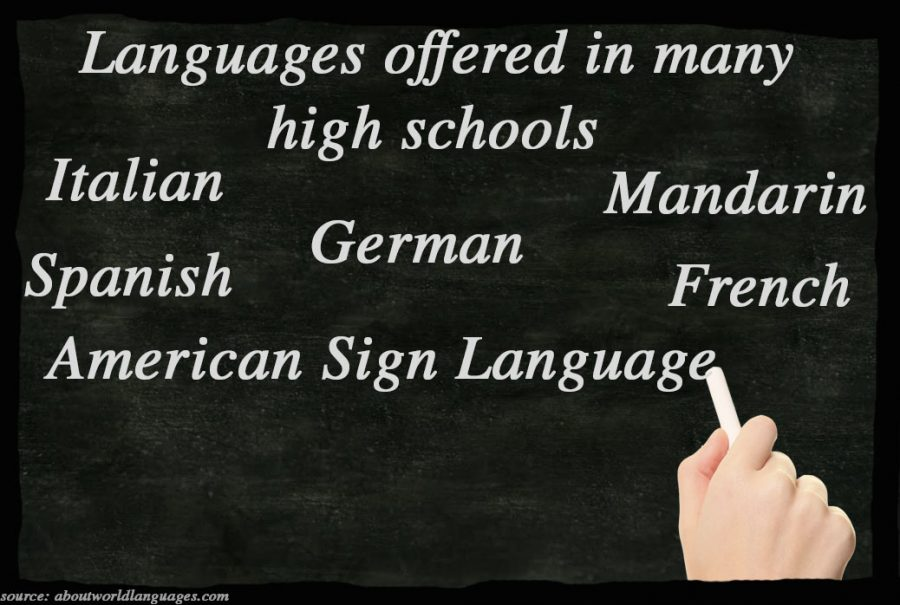 Students thoughts on foreign languages