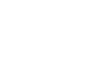 The best stories being published on the SNO Sites network