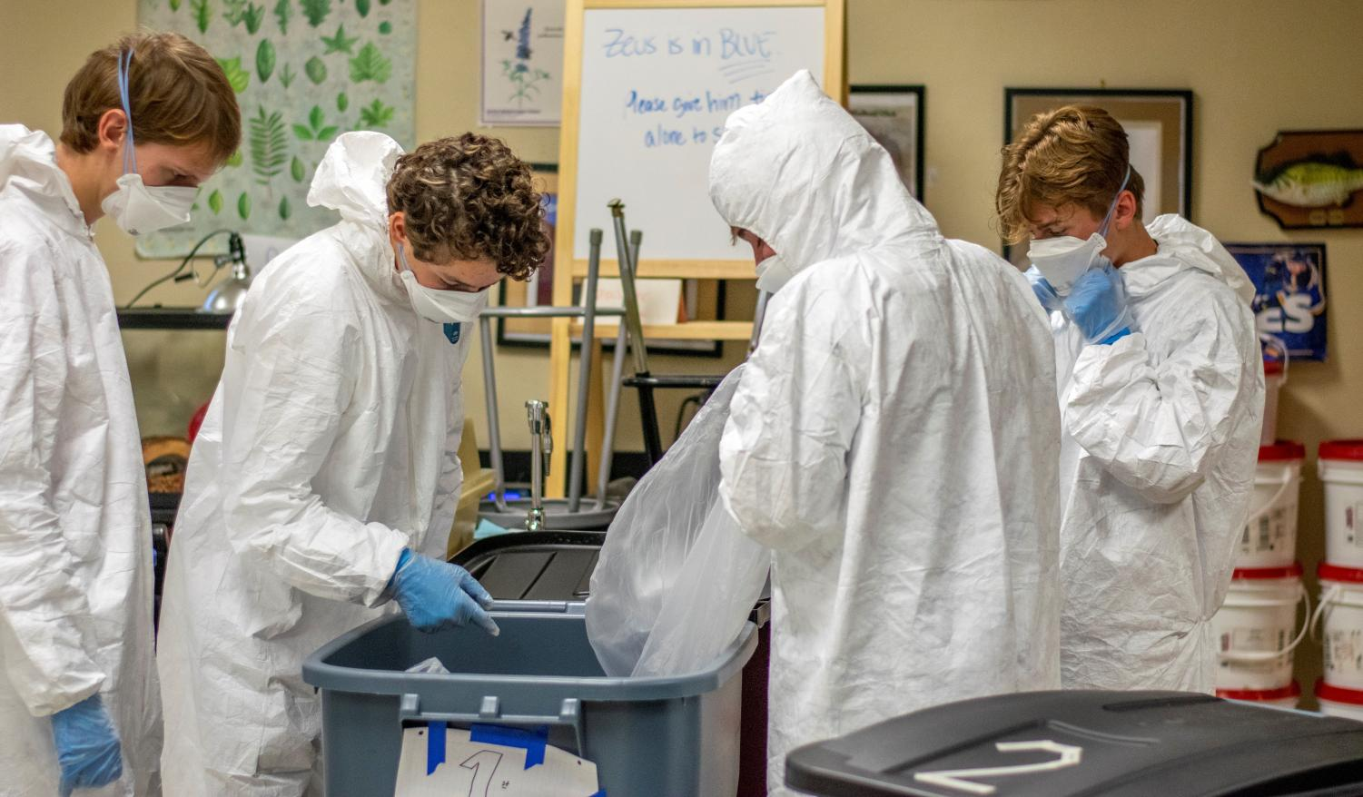 (from left to right) Seniors Alex Polt, Gabriel Myers, Andrew Nieters, and Joshua Adams look through waste during an AP Biology class period.