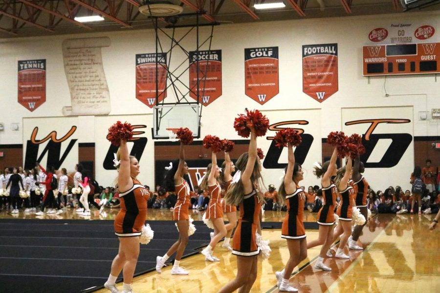 Cheerleaders+perform+at+Sept.+6+pep+rally%2C+hyping+up+the+crowd+between+presenters.