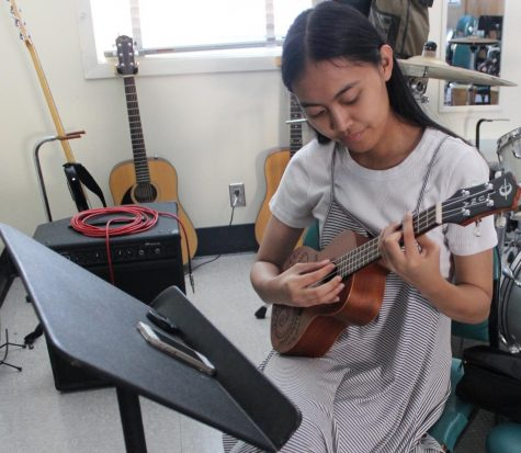 Musicians gear up for Daniel Pearl World Music Day
