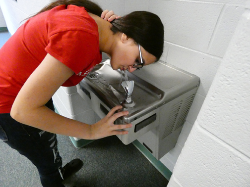 KCS discovers lead in water fountains