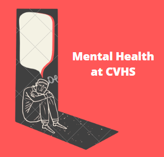 CVHS to Hire A Dedicated Mental Health Counselor Amid Calls for More Support