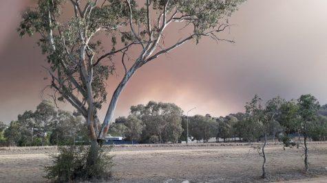 Fighting fire: Australia battles blazing bushfires in war against climate change