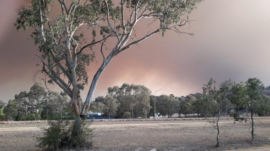 Fighting fire: Australia battles blazing bushfires in war against climate change