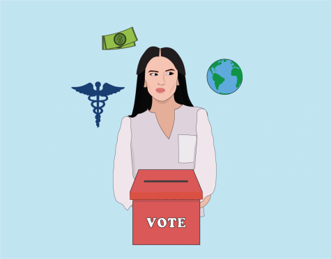 """Going into the 2020 elections, voters should consider policy positions on issues such as healthcare, the environment and the economy, rather than """"electability."""""""