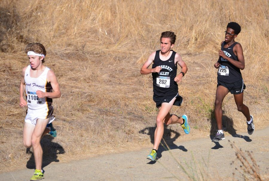 Michael Schneider: a Bohemian ultrarunner in the making