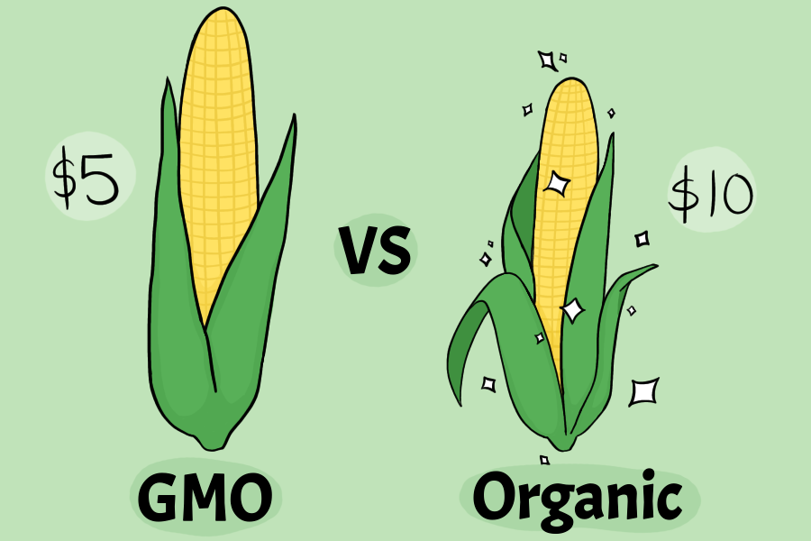 The+debate+over+the+health+of+GMO+vs.+organic+foods+is+one+that+consumers+continually+have.+Original+art+by+Evanthia+Stirou.