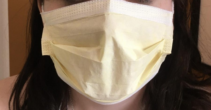 The+wearing+of+masks+was+one+issue+that+highlighted+coronavirus+concerns.