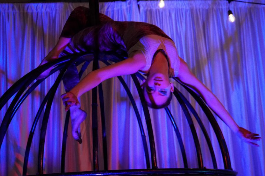 Sophomore Mac Baker Reaches New Heights in Her International Circus Arts Career