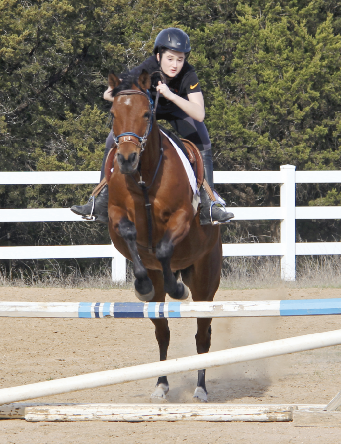 Equestrian jumps to new heights