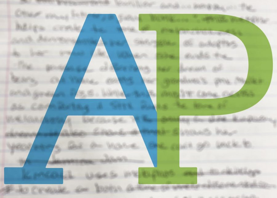 Technical issues arise during online AP testing