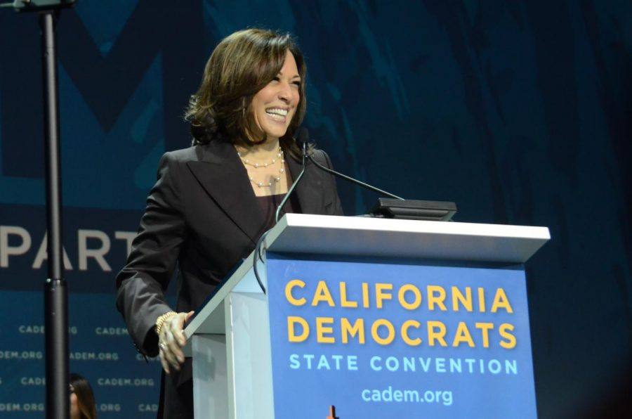 "Kamala Harris ""has changed the landscape"": nomination paves way for women of color in politics"