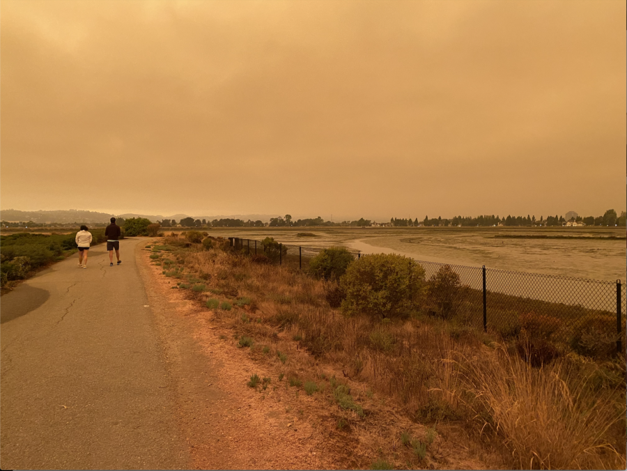 The fires across California paint an ominous orange sky, casting a smokey shadow over the Bay Area.