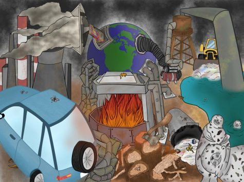 Humans are the cause of the planet's environmental changes. The ones most heavily paying for their mistakes are the other creatures that live on it.