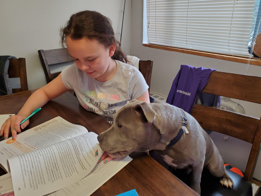 11-year old Abigail (Abby) Kaye, the daughter of eleventh grade Class Dean Shelly Kaye, studies at home accompanied by her family