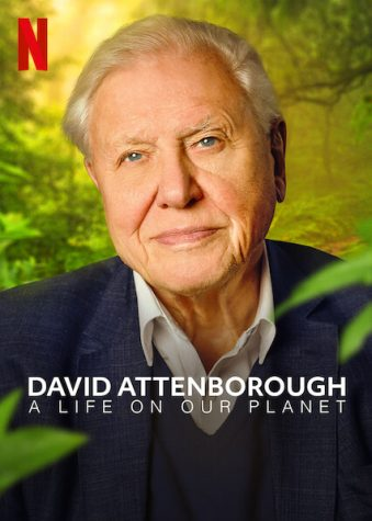 94-year-old naturalist David Attenborough takes a stand on climate change in his recent documentary, which can be viewed on Netflix.