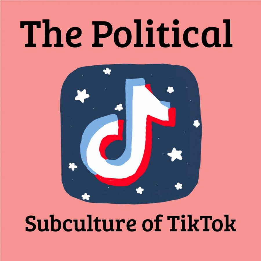 A Look Inside TikTok's Political Subculture