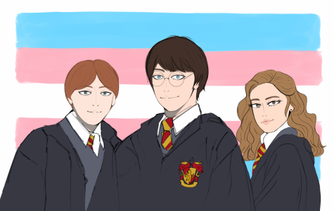 Harry Potter, Ron Weasley, and Hermione Granger set in front of the transgender flag.