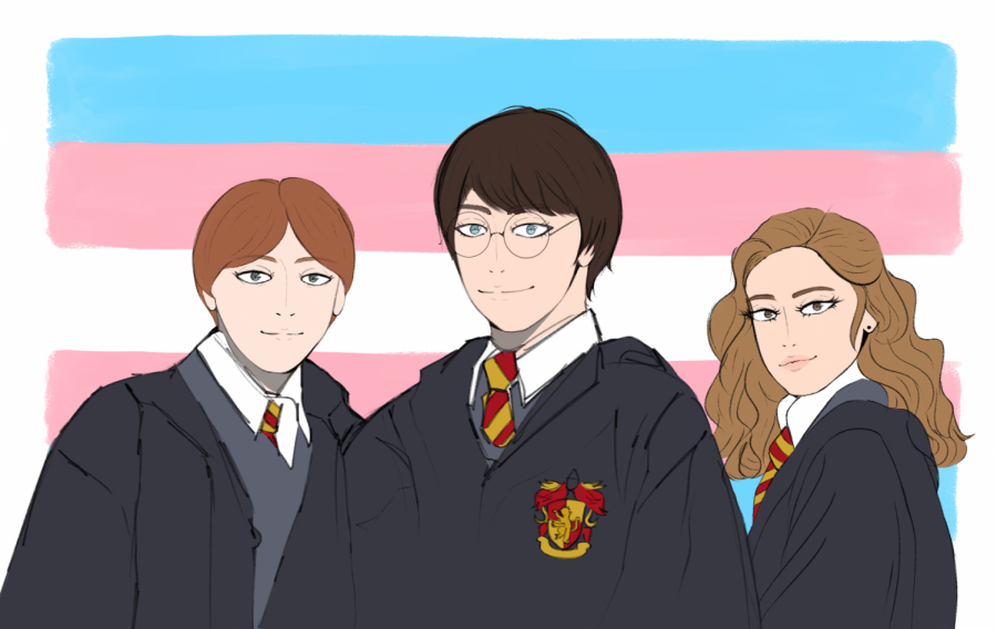 Harry+Potter%2C+Ron+Weasley%2C+and+Hermione+Granger+set+in+front+of+the+transgender+flag.