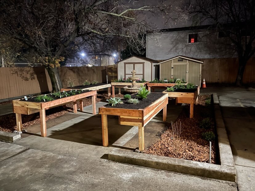 Student builds Sensory Garden to help disabled adults