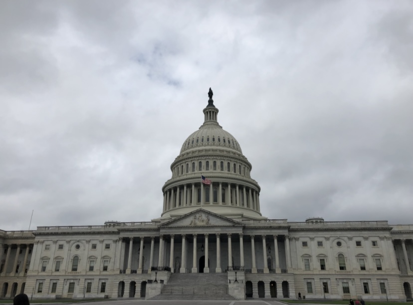 Capitol Stormed, Students, Teachers React