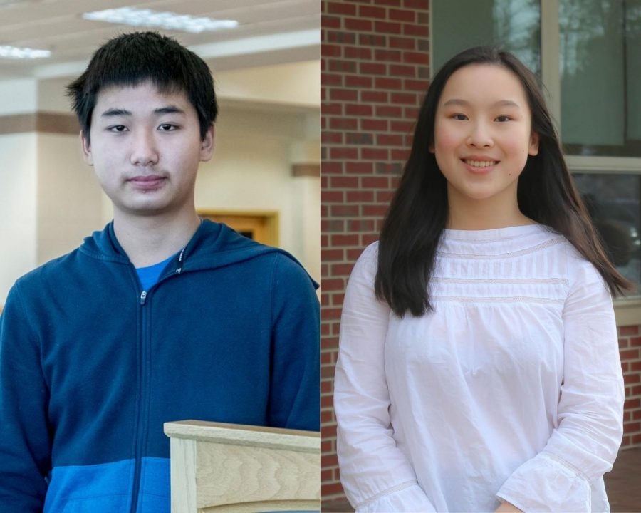 Student-led tutoring service provides online educational opportunities