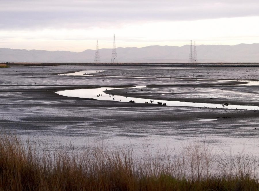 Climate legislation signals a renewed focus on the San Francisco Bay