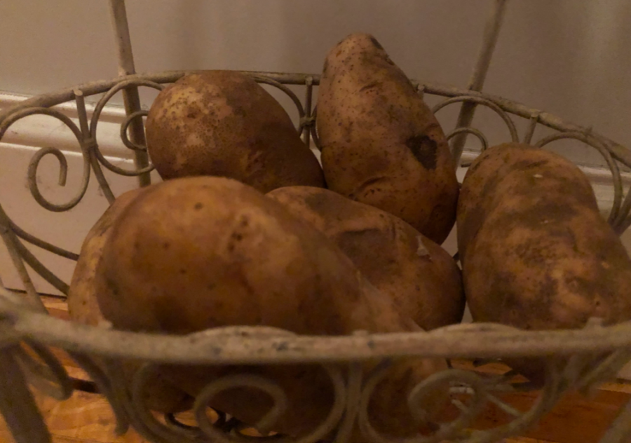 Potato mystery sparks national coverage