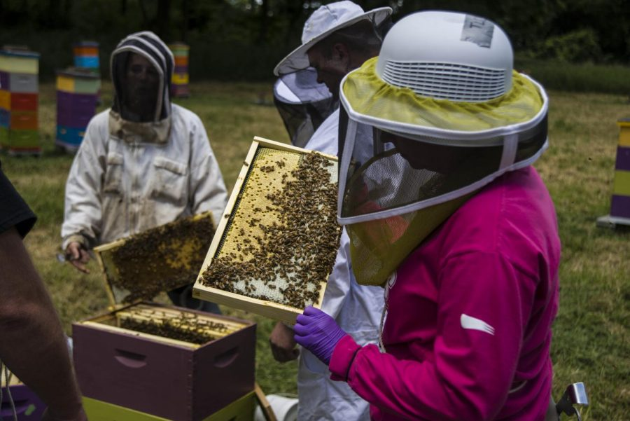 Heroes to Hives is coming to Missouri. The program originally started in Michigan. The program founder Adam Ingrao said,