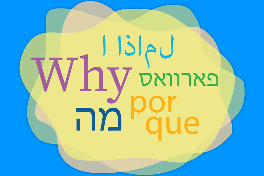 How is your seder different from all other seders?