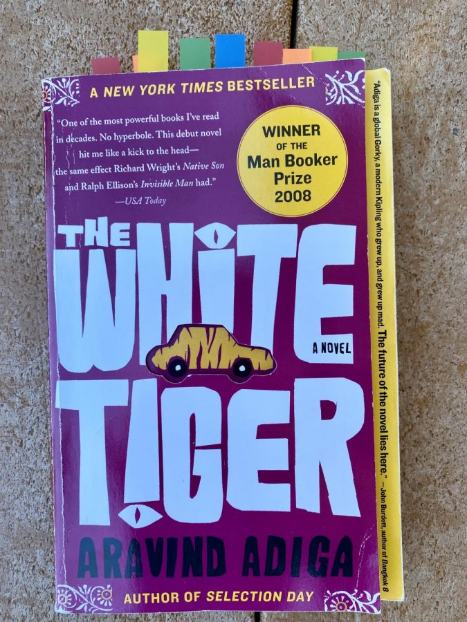 """Netflix's """"The White Tiger"""" walks the line between scathing and safe"""