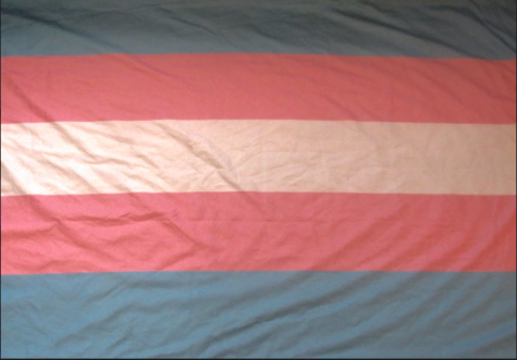The transgender pride flag fills the frame with its colors of blue, pink and white.