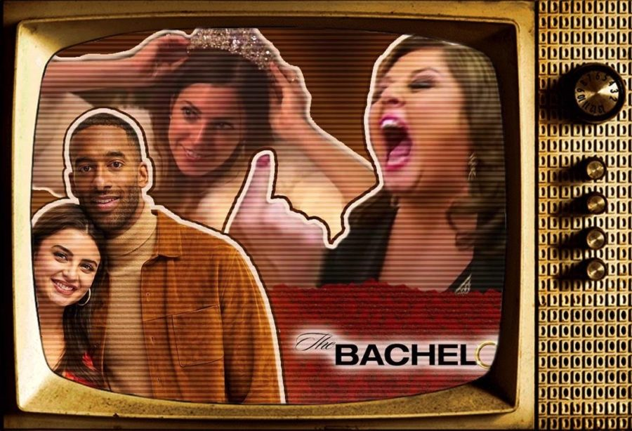 """""""Trash"""" TV: What Makes Reality TV So Appealing?"""