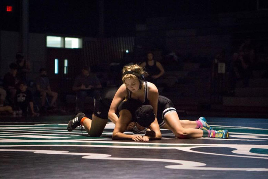 Wrestling with Gender Norms