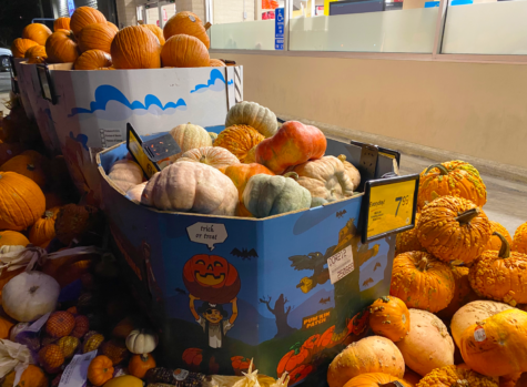 Pumpkin sales spiking in fall lead to many pumpkins rotting on the streets or in landfills.